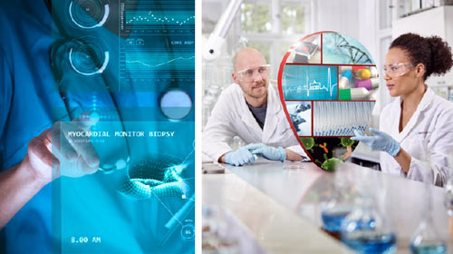 Life Sciences Report Berlin-Brandenburg